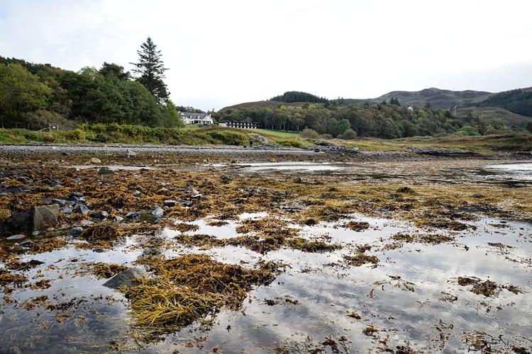 Beach at Loch Melfort Hotel