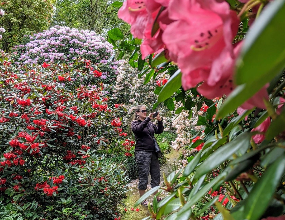 garden walks on the West coast of Scotland
