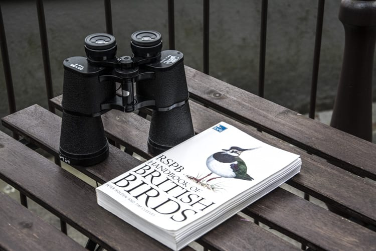loch-melfort-hotel-oban-binoculars-bird-guide