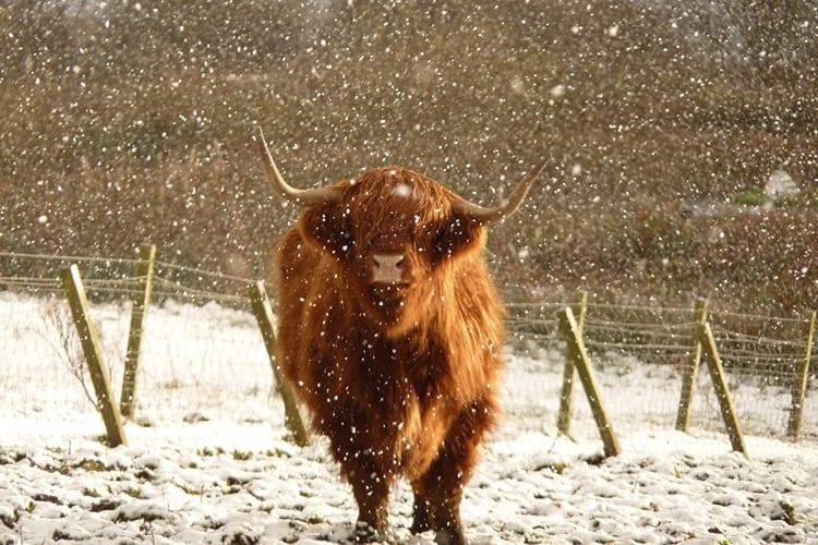 Winter Warmer Offer at Loch Melfort Hotel