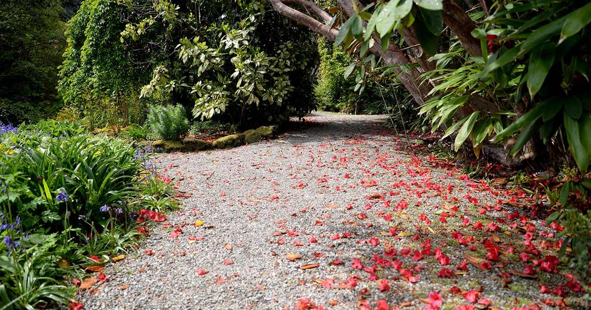 loch-melfort-hotel-gardens-of-argyll