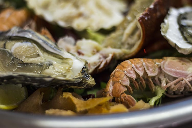 loch melfort hotel oban chartroom II bistro seafood