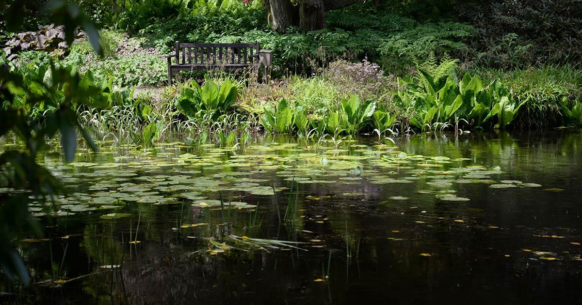 loch melfort oban hotel arduaine garden bench pond lillies