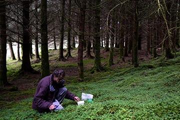 loch-melfort-oban-hotel-foraging