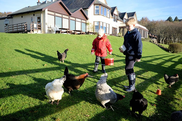 loch melfort oban hotel pet friendly chickens