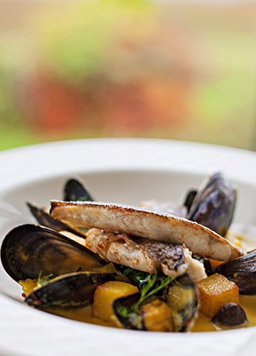 loch-melfort-oban-hotel-seafood-portrait